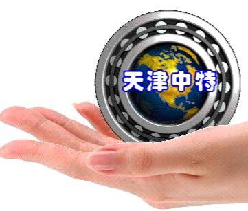 天津市中特轴承公司